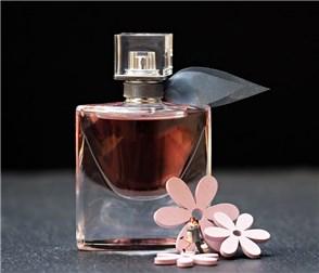 Parfümproben kostenlos